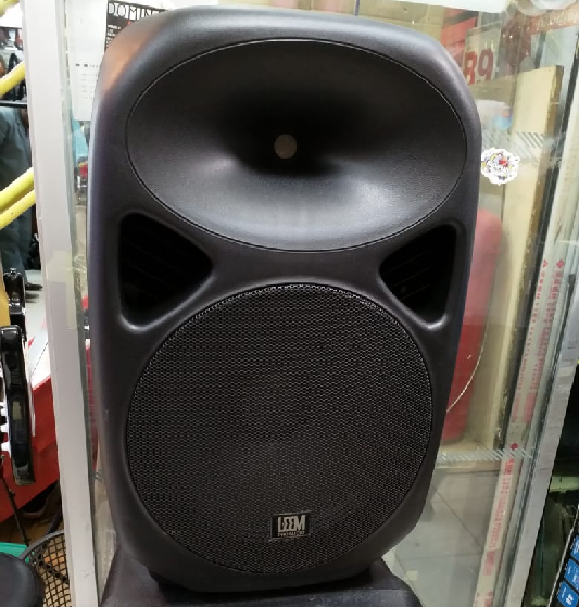 """15"""" Portable rechargeable speakers"""