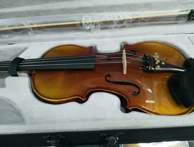 Professional violin